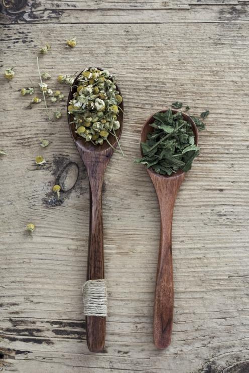Artemisia Natural Therapies Natural Woman's Health